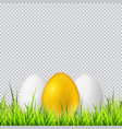 white and golden eggs on a grass realistic vector image vector image