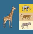 african animals elephant giraffe leopard wild vector image vector image