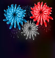Firework Colorized in Flag US for Celebration vector image vector image