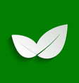 leaf sign paper whitish icon vector image vector image