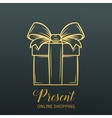 Present decorative icon vector image vector image