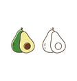 set fresh tasty avocado vector image