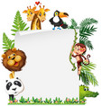 wild animal on note template vector image