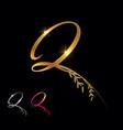 golden letter q monogram initial sign vector image vector image