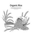 hand drawn rice background rice sack bowl and vector image vector image