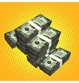 Money bundle of dollars vector image vector image