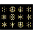 set of gold snowflakes on black vector image vector image