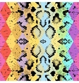 Snake skin texture with colored rhombus vector image vector image