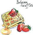watercolor belgian waffles vector image