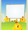 spring easter chicken and wood sign vector image vector image