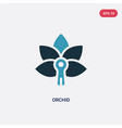 two color orchid icon from nature concept vector image vector image