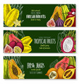 exotic fruits banners set for juice bar vector image vector image