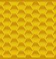 honey apiculture background vector image vector image