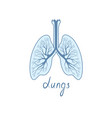 lungs sign human internal organ anatomy icon vector image vector image