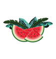 tropical fruit cartoon vector image