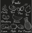 Vintage fruits Hand-drawn chalk blackboard sketch vector image vector image