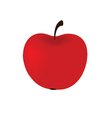 big red apple vector image