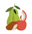 autumn hedgehog pear apple fruits isolated design vector image vector image