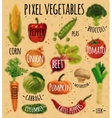 Pixel vegetables kraft vector image