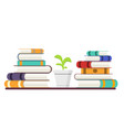 stack of books with colored covers and plant vector image