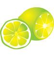 cut yellow lemon vector image