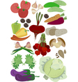 autumn group vegetables for balanced diet