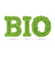 Bio text of green leaves vector image vector image