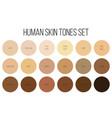creative of human skin tone vector image
