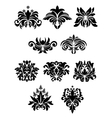 Floral design elements set vector image