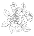 flowers roses contours vector image
