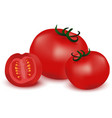 Fresh red Tomatoes vector image