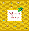 natural honey concept vector image vector image