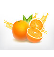 orange fruit with slice vector image vector image