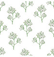 seamless pattern with gypsophila flowers in vector image vector image
