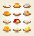 cheese food like parmesan and mozzarella vector image