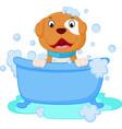 dog cartoon bath vector image