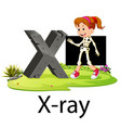 alphabet x for x-ray with the good animation vector image