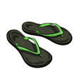 flip flop beach slippers vector image