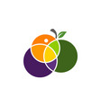 fruit mix logo design template vector image vector image