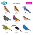 pet birds collection breeds icon set flat style vector image vector image