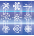 Snowflakes White vector image vector image