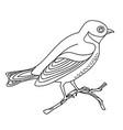 song bird 7 vector image vector image