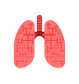 human lungs organ drawn in flat style vector image
