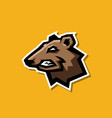 professional angry bear logo for a sport team vector image vector image
