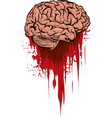 the fresh brain in a puddle vector image vector image