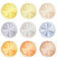 round polished knob centric circles with different vector image