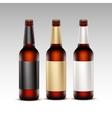 Set of Closed Glass Brown Bottles Dark Beer vector image