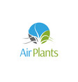 air plants logo and icon vector image