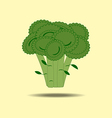 Broccoli Vegetable Icon vector image vector image