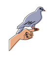 dove in hand peace liberty concept icon vector image vector image
